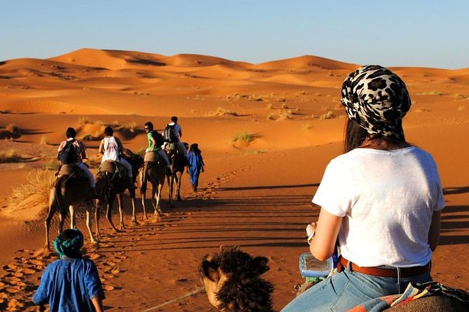 Zagora Desert in Small Group