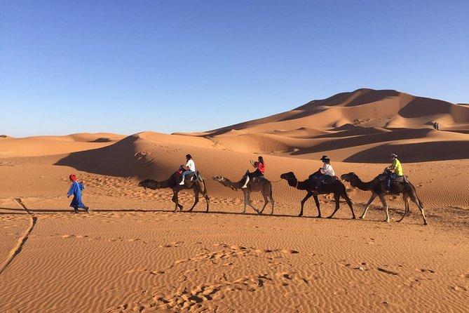 Private 3 Day Sahara Desert Adventure