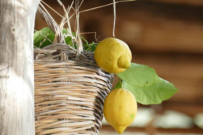 Positano with ceramic and Lemon Tour