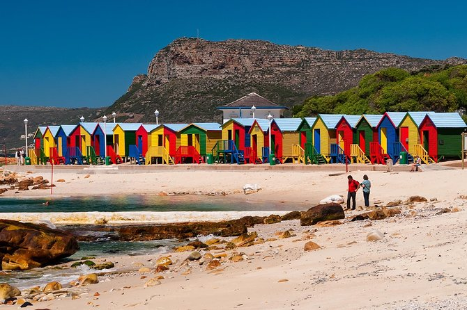Cape of Good hope & penguins full day tour from Cape Town South Africa