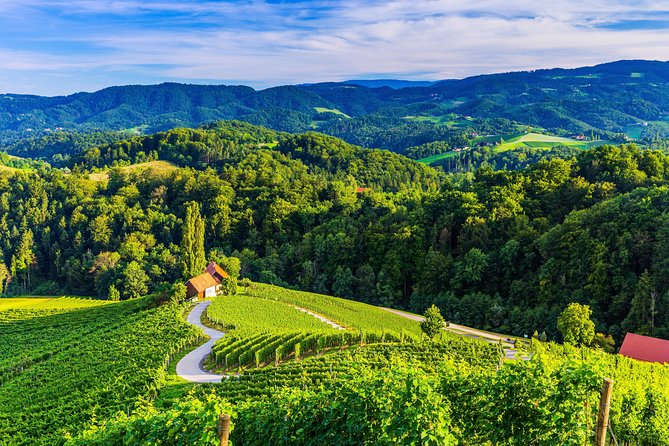 PRIVATE TOUR Maribor, Ptuj and Heart of the Vineyards from Ljubljana
