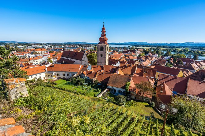 Maribor, Ptuj and Heart of the Vineyards from Ljubljana photo 3
