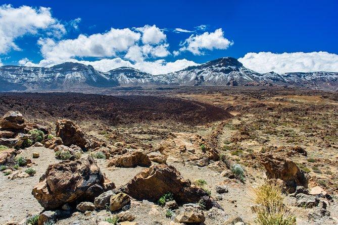 Private Airport Transfer: Puerto de Santiago to Tenerife South Airport (TFS)