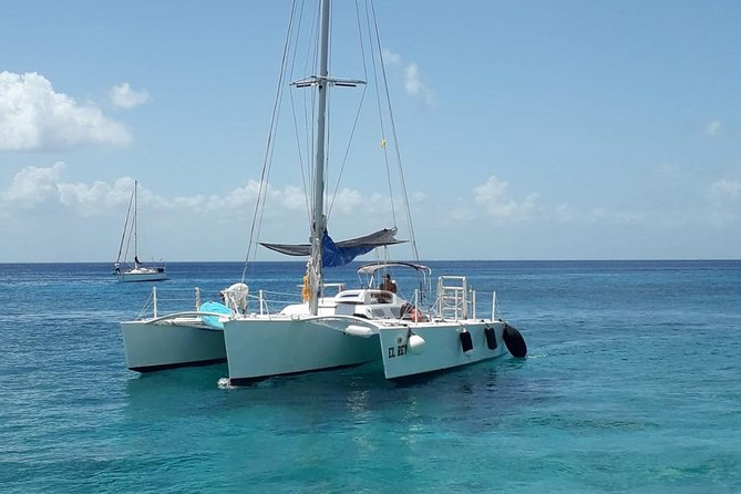 Trimaran Two Reef Snorkel and Beach Party