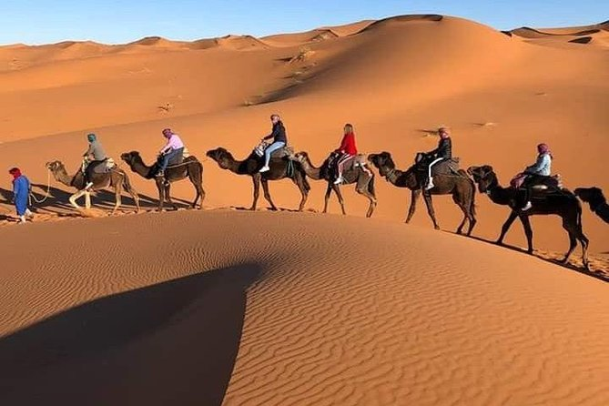 Share Group Sahara Tours