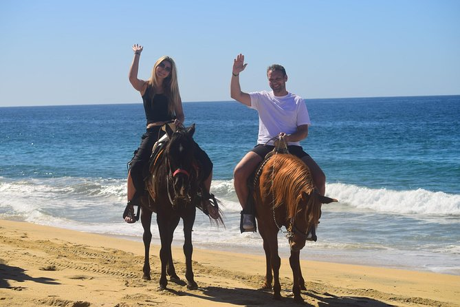 Cabo white sand horseback adventure photo 2