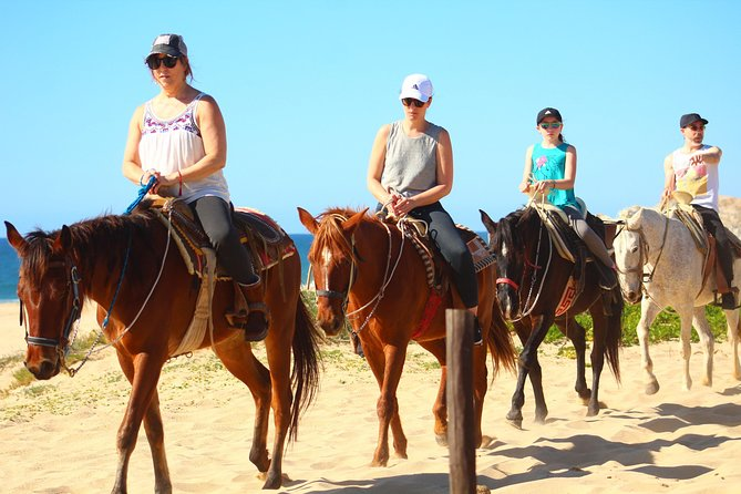 Cabo white sand horseback adventure photo 20