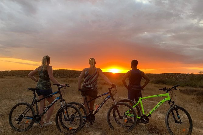 Bike Tour: Sete Vales Suspensos Trail (Marinha and Benagil)