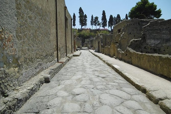 Pompeii and Herculaneum Private Day Tour from Rome