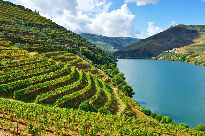 Private tour to the Douro Valley from Porto