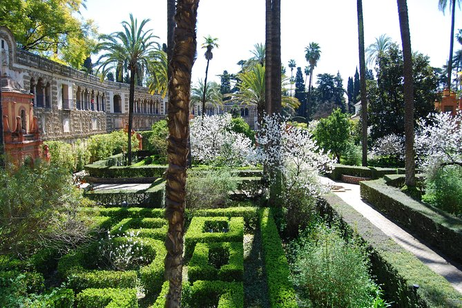 Private guided tour with official guide: Real Alcázar and Santa Cruz