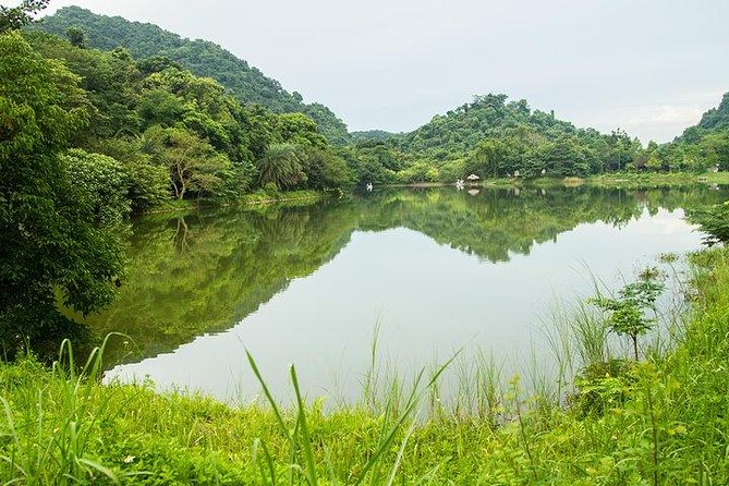Day Trip to Cuc Phuong National Park from Hanoi
