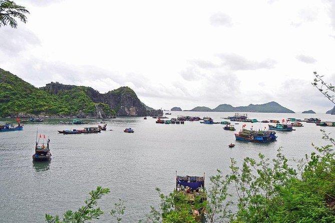 Explore Cat Ba Island from Ha Long