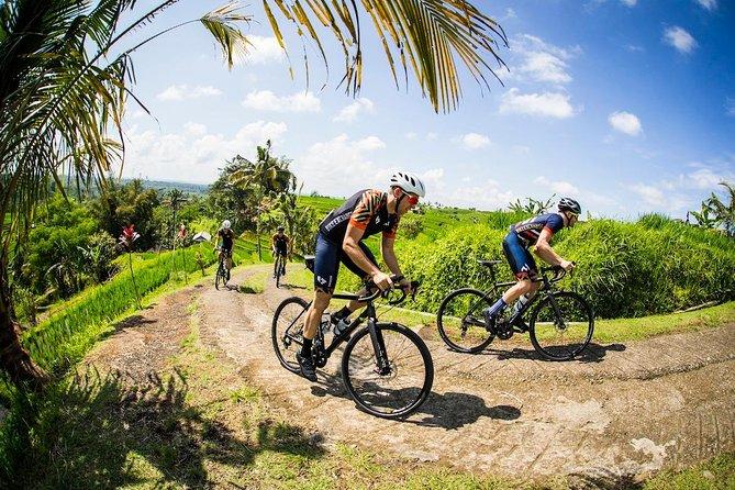 Kintamani Downhill Mountain Cycling: Unique Bike Trip Through Bali's Countryside