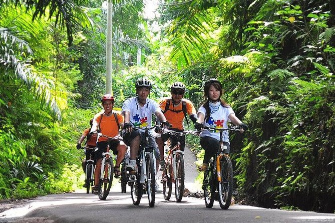 Kintamani Downhill Mountain Cycling: Unique Bike Trip Through Bali's Countryside