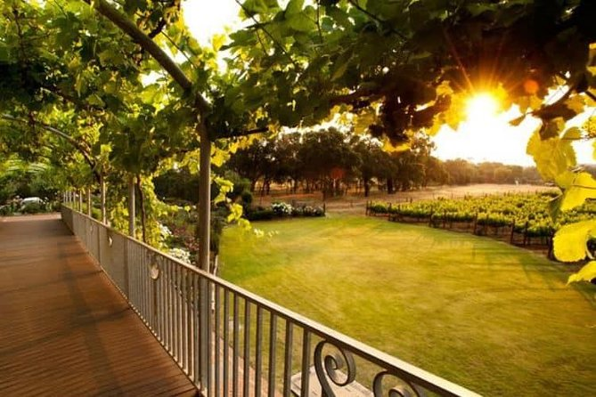Busselton and scenic drive full day tour