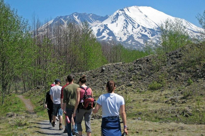 Mt. St. Helens National Monument from Seattle: All-Inclusive Small-Group Tour