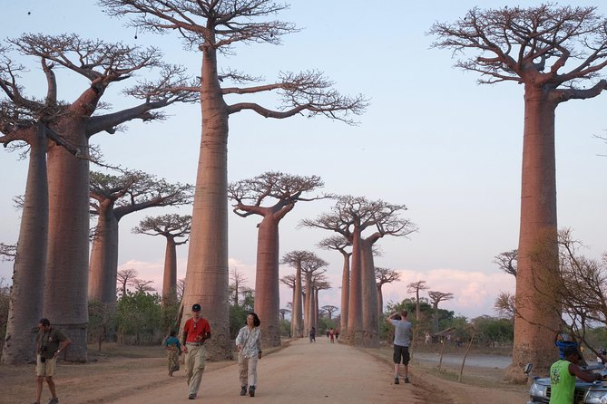 Madagascar Classic Travel Route 7 Days 6 Nights