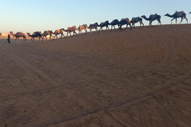 Merzouga Desert 3 days tour From Marrakech