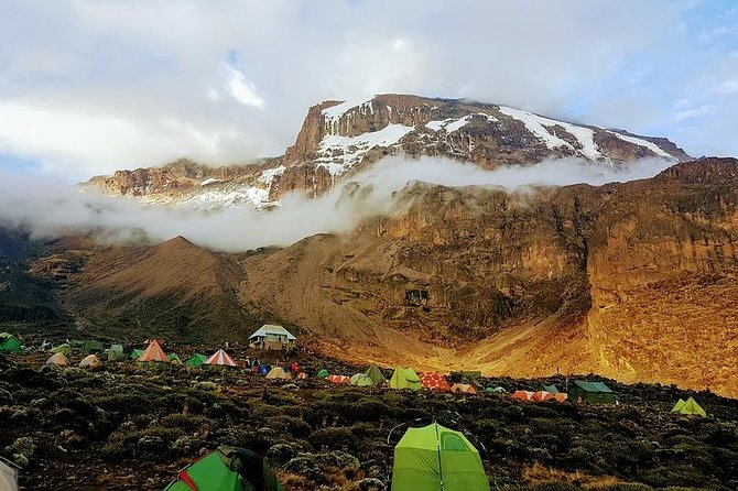 8-Day Kilimanjaro Climb through Lemosho Route