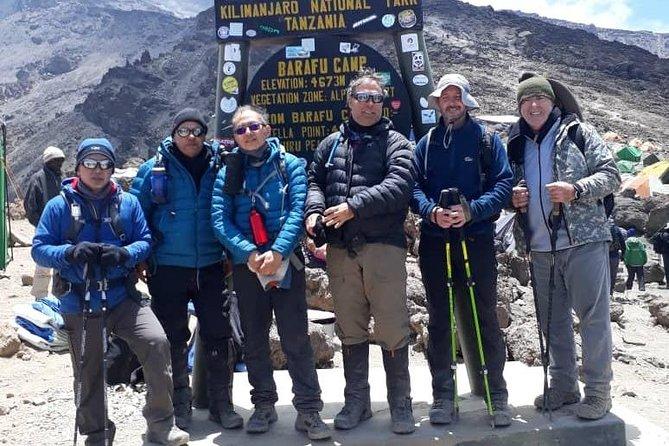 8 Days Lemosho Route (Mount Kilimanjaro Trekking)