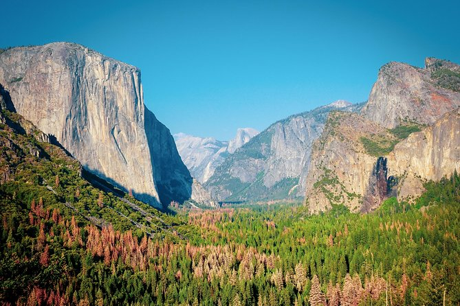 Full Day Tour to Yosemite National Park from Los Angeles