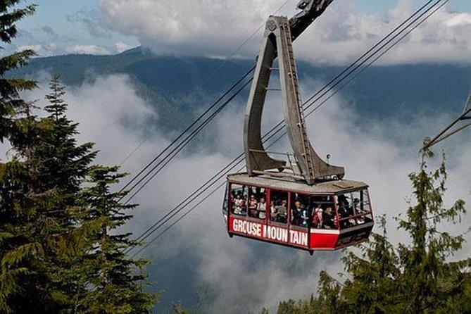 Vancouver Mountain to Mountain (Grouse,Cypress,Mount Seymour) Private