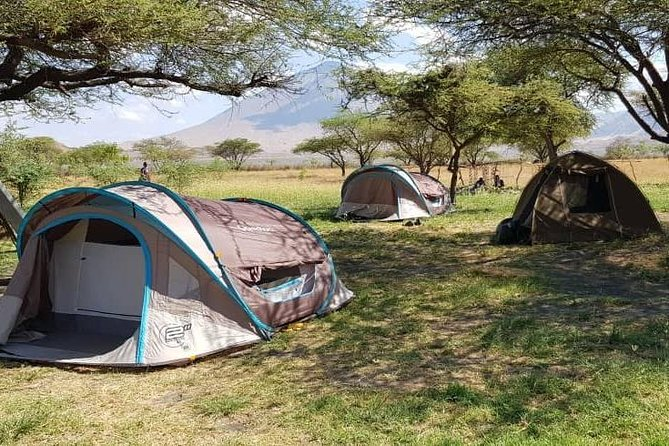 4 Days Tanzania Budget Camping Safaris