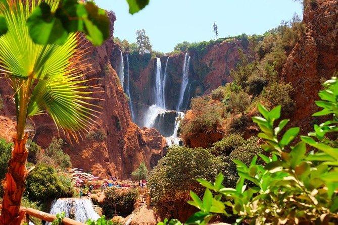 Ouzoud Waterfalls & Atlas Mountains Full-Day Trip Marrakech