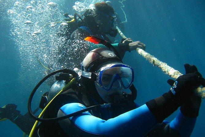 Open Water Diver course PADI in Playa del Carmen