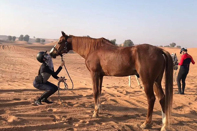 desert horse riding experience photo 3