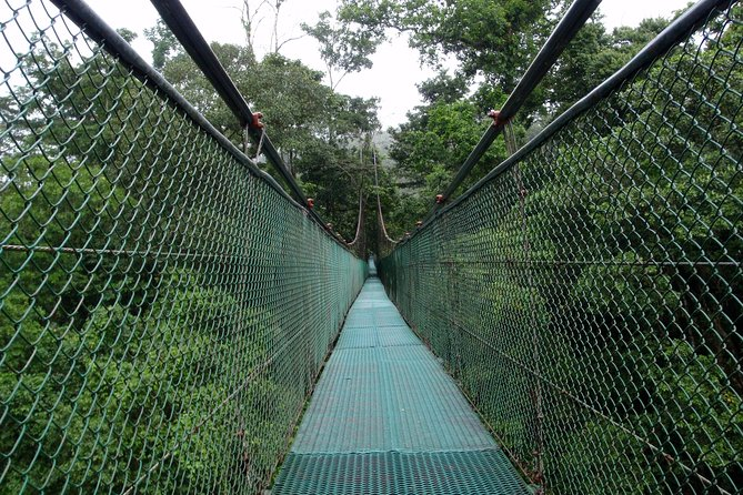 General entrance to the rainforest of Tirimbina Biological Reserve, Sarapiquí