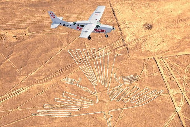 Amazing Nazca Lines & Ballestas Islands (full day) (small group)