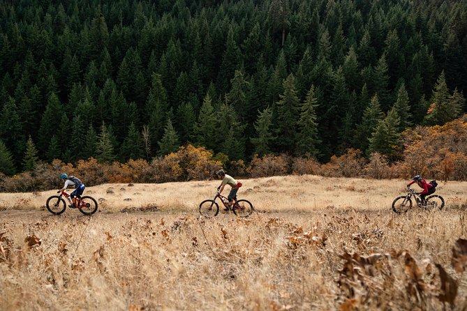 Hood River Guided Mountain Bike Ride