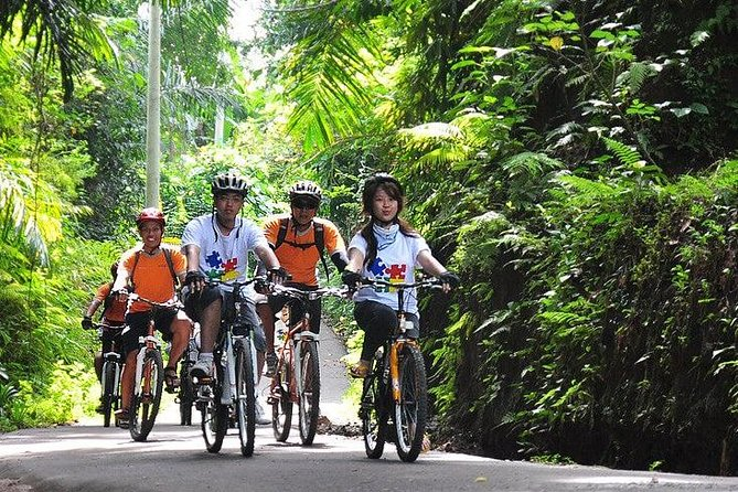 Bali Countryside Cycling and ATV Ride Packages