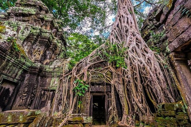 Private Angkor Temples Walking Tour from Siem Reap - Free Hotel Pick up/Drop Off