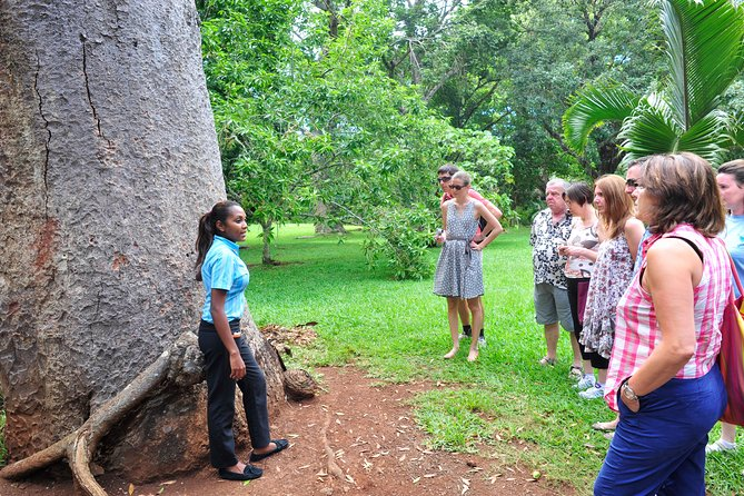Historical Guided Tour Pamplemousses Botanical Garden-Port Louis Include Lunch photo 4