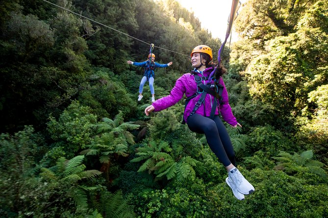The Ultimate Canopy Tour - Day Tour - Ex-Auckland
