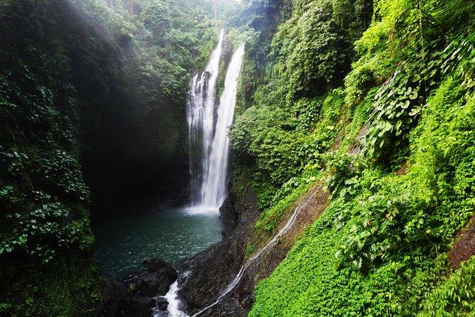Discover the Sambangan Secret Garden