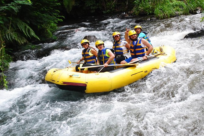 Full-Day Rafting Adventure in Telaga Waja and Tirta Empul and Tegenungan Tour