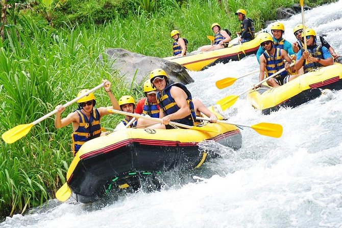 Full-Day Rafting Adventure in Telaga Waja River and Bali Best Waterfalls Tour