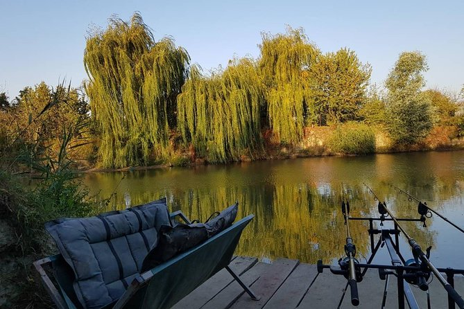 Novi Sad Carp Fishing Tour