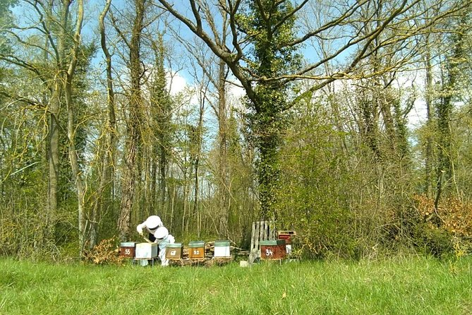 Visit apiary and honey house hatier & Fils