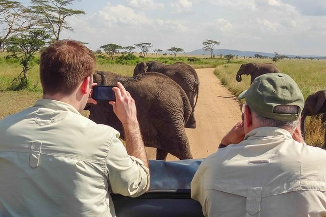 4-Day Wildlife Safari in Ruaha National Park
