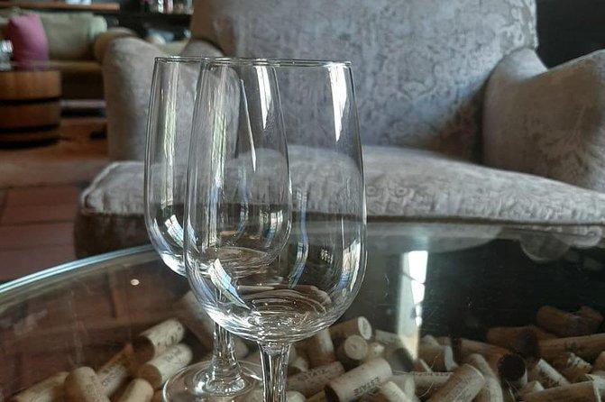 Wine Tour in Stellenbosch