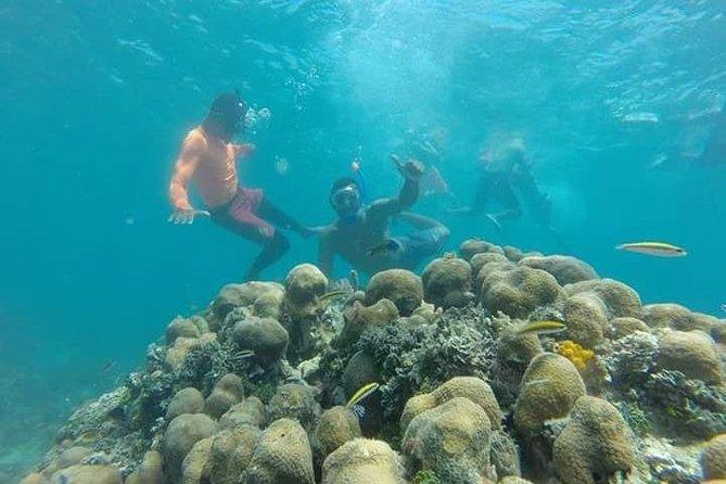 Baru Island, Playa Blanca + Snorkeling