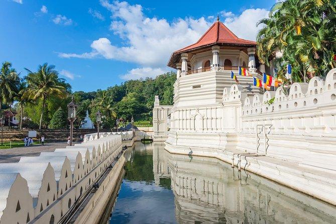 5 Days Explore Sri Lanka - Culture & Wild Tour