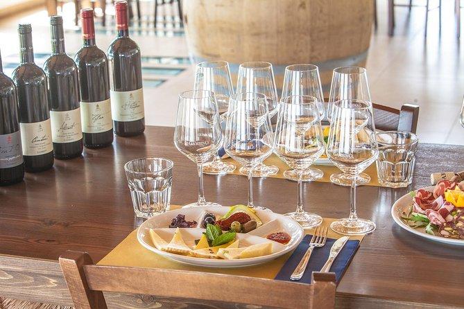 Etna tour panoramico + Degustazione di vini