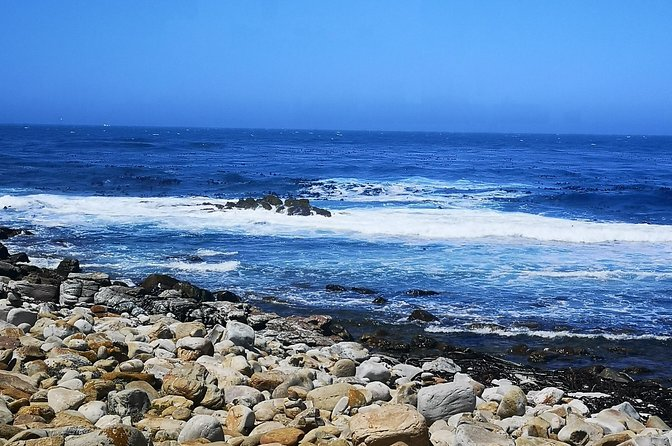 Cape of Good Hope. RenesTours. photo 9