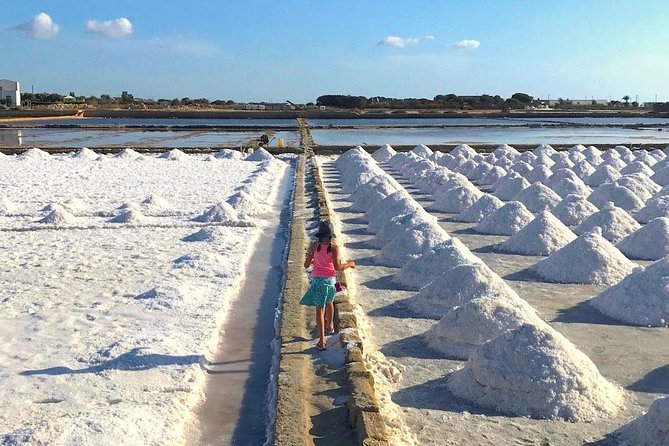 Tour from Palermo to Segesta, Erice, Trapani and salt pans